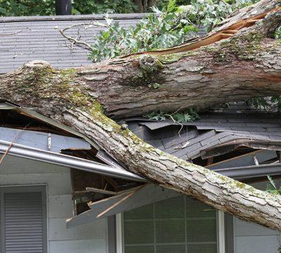 image-storm-damage